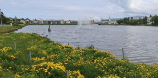 Tjornin Pond