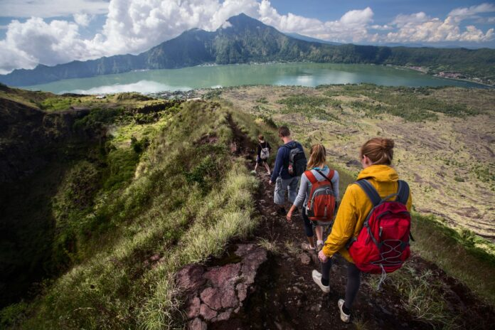 Best Travel Blog WordPress Themes